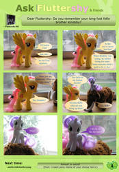 Ask Brushable Fluttershy - Q4 - Kindshy by dutchscout
