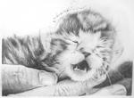 Meow. meow.