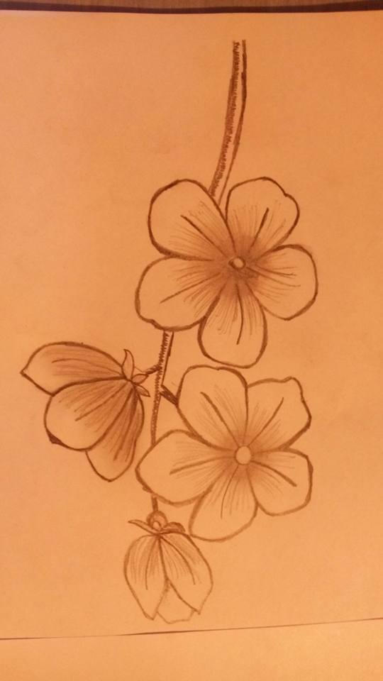 My sping flowers drawing