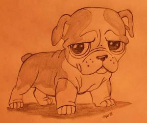 My Dog Drawing by expirat-ro