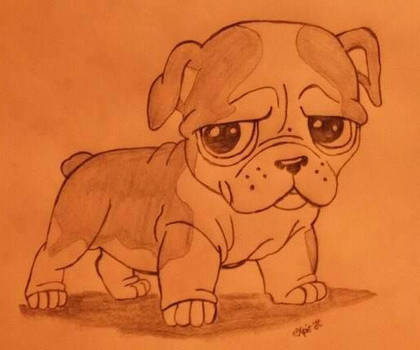 My Dog Drawing