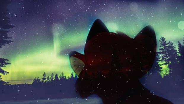 The northern lights~for Arika.