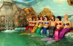 Mermaid group 3