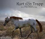 Kurt Von Trapp