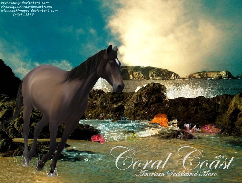 Coral Coast by JuneButterfly-stock