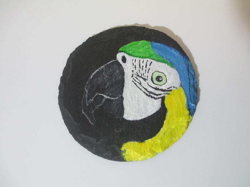 Blue and Gold Macaw Coaster by MadalynC
