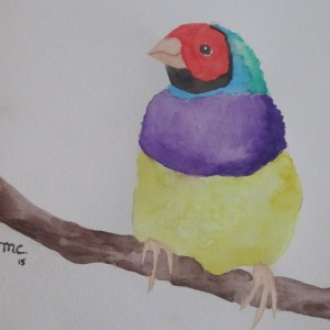 MadalynC's Profile Picture
