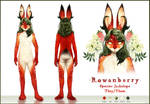 [C] HQ Ref Sheet and Character Design (Rowanberry)