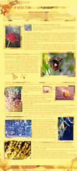 Photography tutorial - Bokeh by Nariscuss