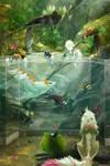 Aquarium - Conservatory
