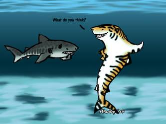 Thursday Shark- Tiger Shark by wachey