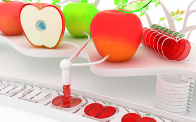 Making apples by k3-studio