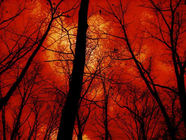 Armageddon Sky? by 22xbucketheadx22