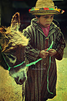 lil kid and his donkey