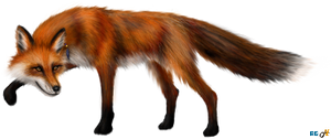 Kateri [mc121f] - Red Fox Form by indyana