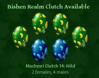 Bishen Realm: Machesri Clutch 14 *CLOSED* by indyana