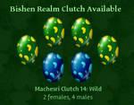 Bishen Realm: Machesri Clutch 14 *CLOSED*