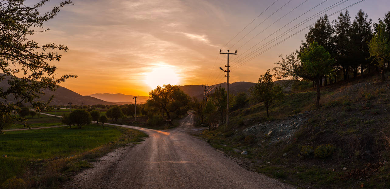 Path Home by T-20-A-20