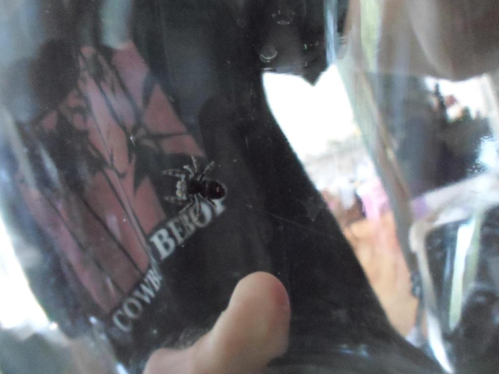 same little spider by heartbrokensamurai