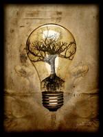 Enlighten - Print by DISENT