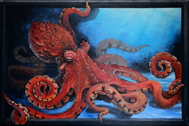 Octopus for Lucas by S-Hirsack