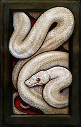 White Snake in Frame by S-Hirsack