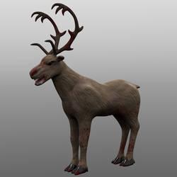 Crazed Reindeer
