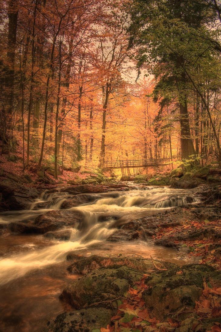 .: Baechlein im Zauberwald 5:. by german-dragon