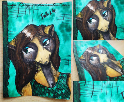 [ACEO]: Racoon lady