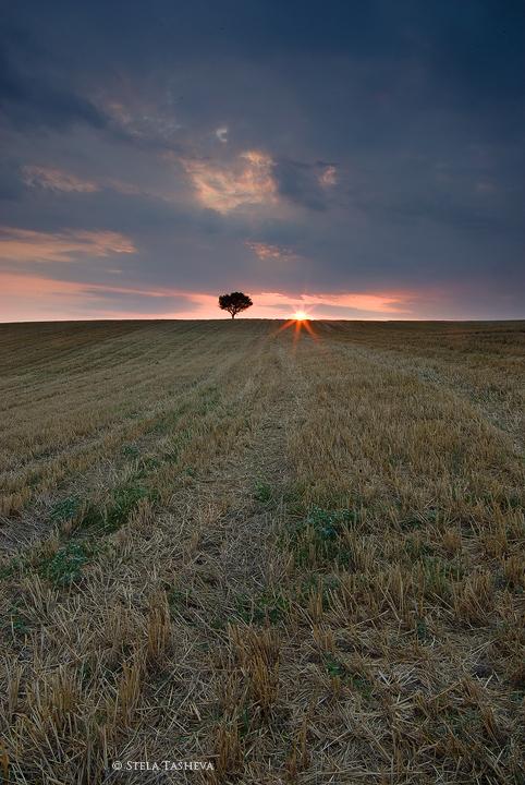 Summer Sunset 4 by tangratannakra