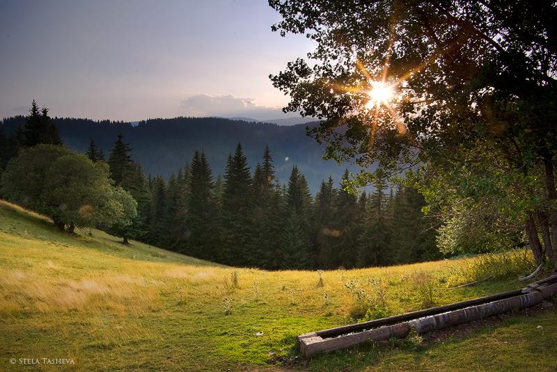Rozhen, Rhodope Mountain 2 by tangratannakra