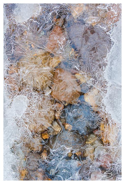 Frozen World by tangratannakra