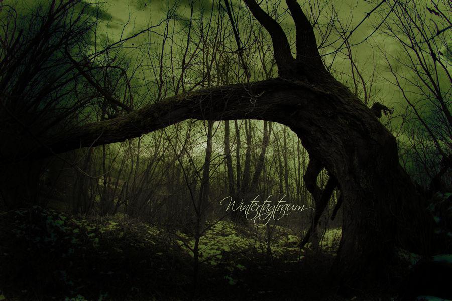 .:Sleepy Hollow:.