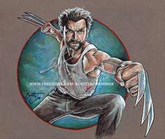 Wolverine (2014) by scotty309