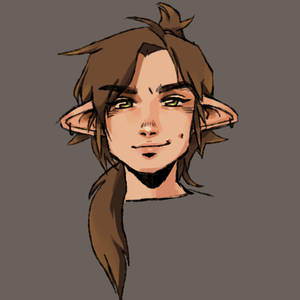 my dnd character that looks like a slightly more