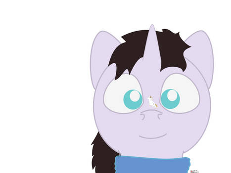 NATG 4 Day 3 - A Special Snowflake