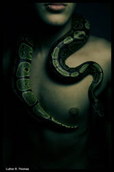 Slither by L-u-t-h-e-r