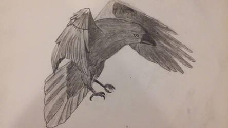 The First Raven by GlassScale