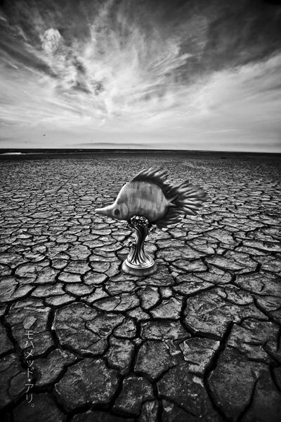 Drought .. by Photographertech