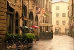 Rainy Florence