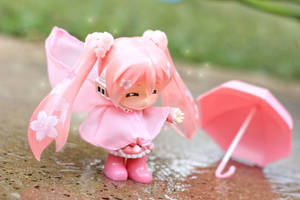 It rained today! by Awesomealexis1
