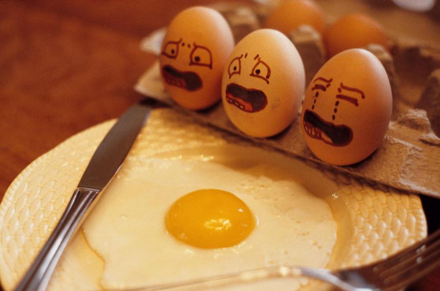 صورة اعجبتني لنجعلها صفحة لكل من عنده صورة مميزة او كريكاتير او منظر رائع ومميز/سعيد الاعور  Screaming_eggs_by_500daysofrudy-d35w9ic