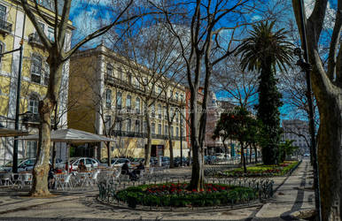 Jardim! by claket57