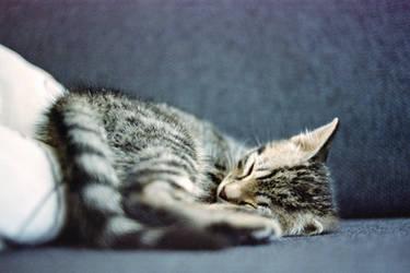 The way i sleep.... by TLO-Photography