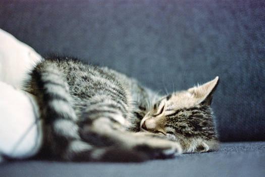 The way i sleep....