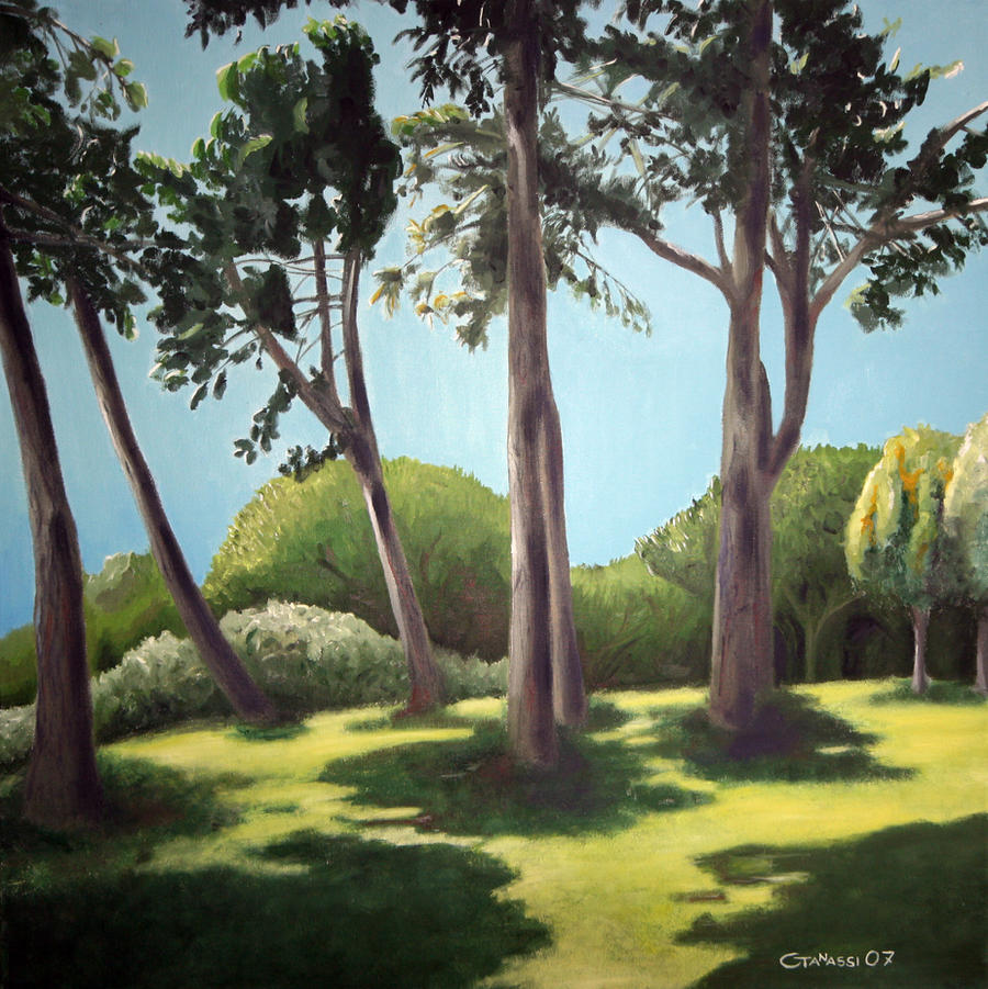 Pine Forest I by cesaretanassi