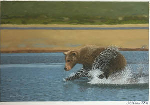 Grizzly bear soft pastel