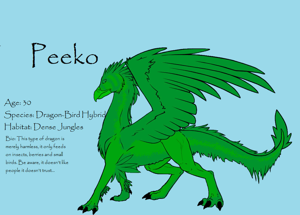 Dragon OC: Peeko (Dragon Creator) by EchoTheWyvern111 on DeviantArt