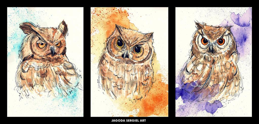Three Little Owls by Jagtru