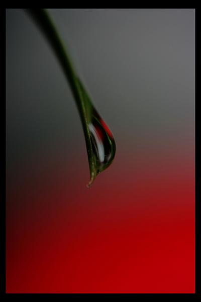 .05 fantasy: Shed a Tear by la-fleur